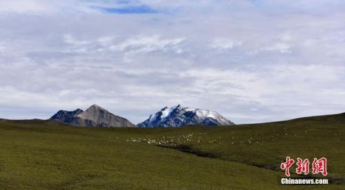 资料图:雪后的祁连山。 武雪峰 摄