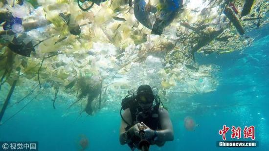 资料图:当地时间2018年3月3日,一名英国男子在巴厘岛海域潜水时拍下触目惊心的一幕。海洋中漂浮着大量塑料垃圾:瓶子、袋子、杯子、桶、吸管等等,鱼类及其他海洋生物都避之而不及。 图片来源:视觉中国