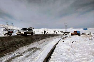 图为泽库县积雪影响牛羊采食和道路交通运输。唐仲峰摄
