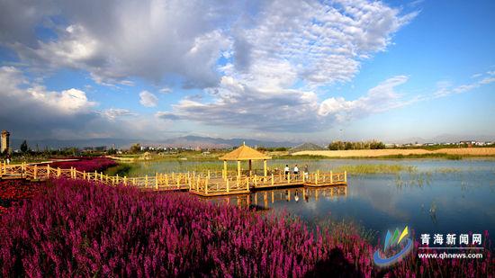 位于甘肃省张掖市的黑河湿地公园(摄影:中国张掖网 王将)