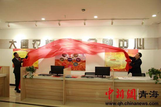 图为大通农村普惠金融中心揭牌。王学伟摄