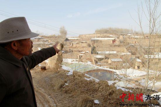图为李洪占向记者介绍自己在家对面山头种的树林。李培源摄