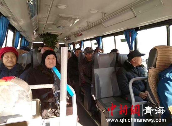图为新投运的公交车。 张添福 摄