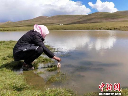 图为生态湿地管护员正在湿地捡拾垃圾。 惠海珍 摄
