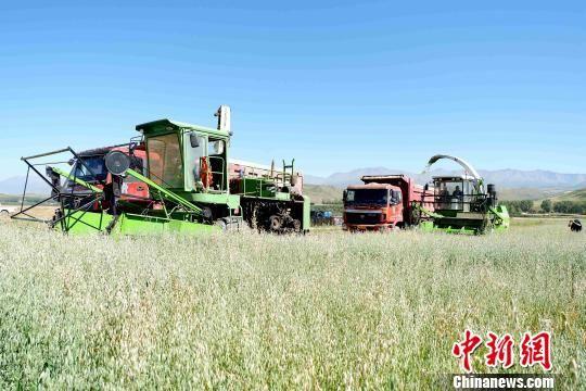 图为农业实现机械化。 李隽 摄