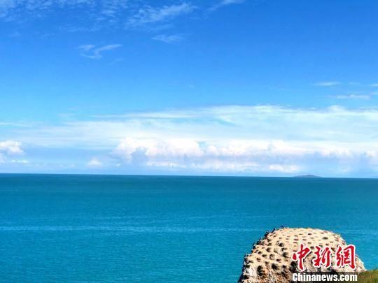 资料图为青海湖鸟岛。 罗云鹏 摄