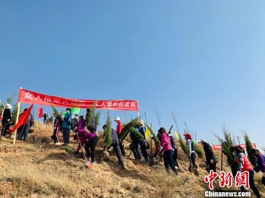"""4月10日,""""海藏咽喉""""青海海东掀起今春植树造林""""大会战""""。 孙睿 摄"""