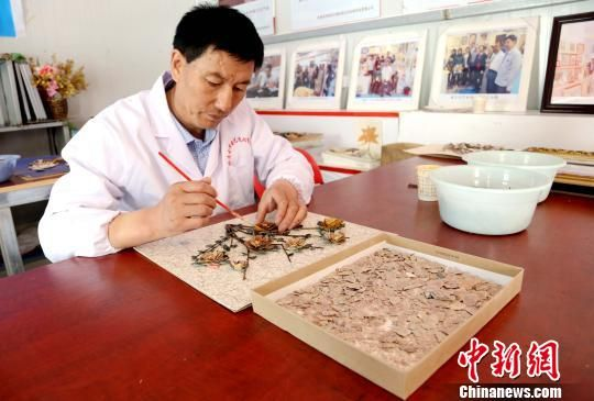 图为王忠祥展示玉石画制作。 马铭言 摄