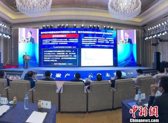 图为6月21日在青海西宁举行的海南州第二届大数据产业发展高峰论坛现场。 罗云鹏 摄