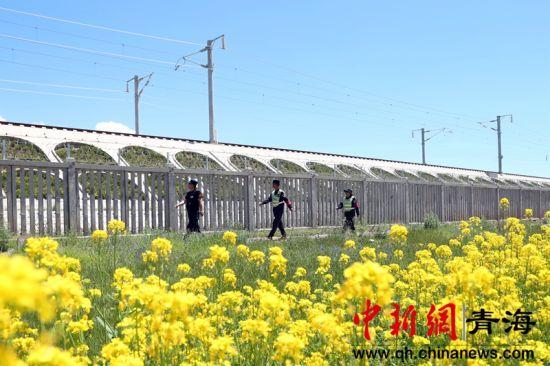 图为铁路民警徒步巡查高铁线路。谢飞摄。