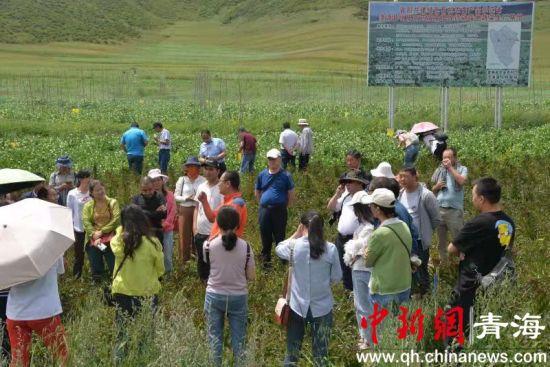 图为培训会进行实地参观教学。青海大学新农村发展研究院供图