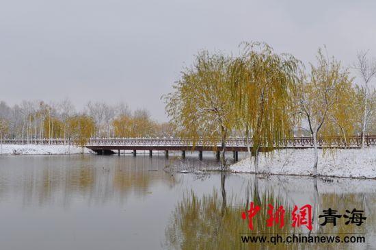 《北川冬韵》 王富红
