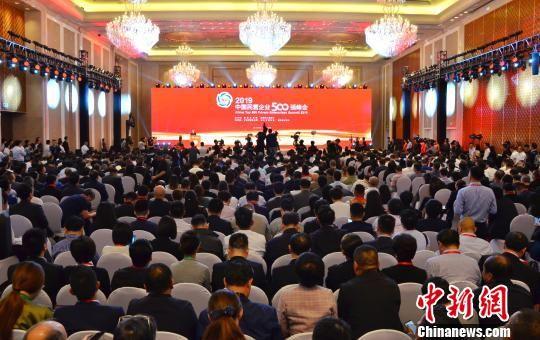 图为2019中国民营企业500强峰会现场。 鲁丹阳 摄