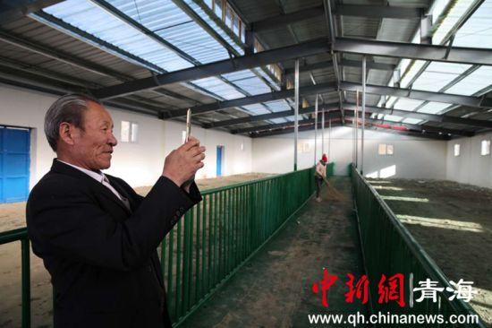 随着白藏羊产业不断发展壮大。年扎生态畜牧业合作社又增盖了羊舍。图为长寿老人正在拍照。胡贵龙摄