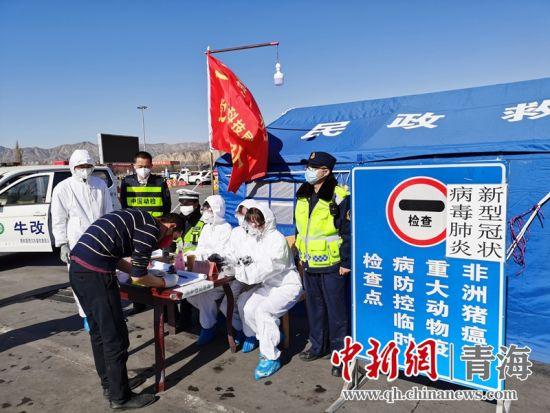 """图为青海省动物卫生监督所""""动监之花""""在防疫工作现场。"""