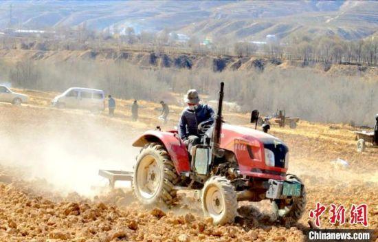 图为黄南州同仁县保安镇民众正在春耕播种 多杰才旦 摄