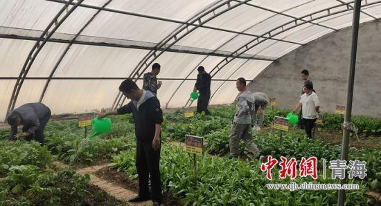 图为机关党员日常管护工作现场。 祁连县委宣传部供图