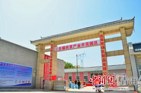 图为青海省海东市平安区三合镇扶贫产业示范园。 鲁丹阳摄