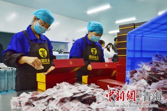 图为青海省海东市平安区三合镇扶贫产业示范园内的员工正在打包枸杞。 鲁丹阳摄
