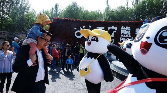 走,看熊猫 海东 摄