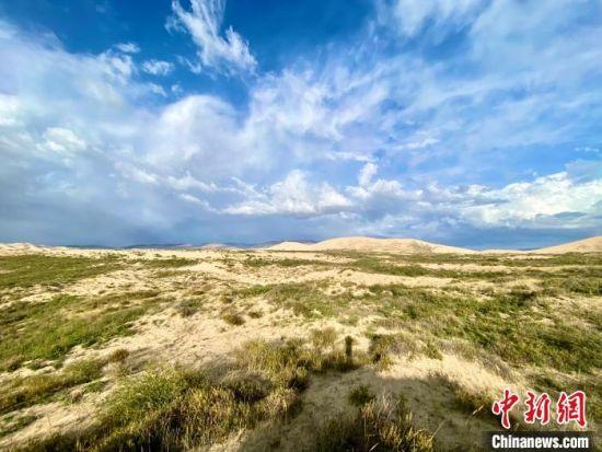 图为关停四年后的沙岛景区现状。 李江宁 摄