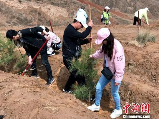 青海123万余青少年五年建成7000余亩青年林