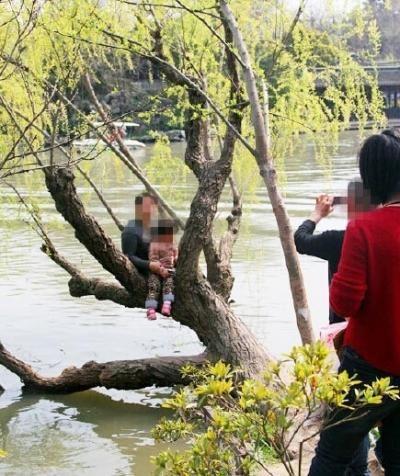 大人抱着小孩上树拍照.