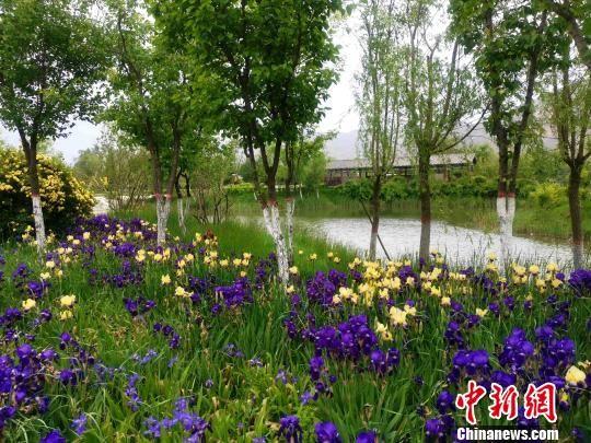 """青海西宁推行""""海绵+N""""实现西北半干旱城市实力""""润城"""""""