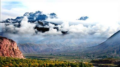 电脑蒙古大树风景壁纸