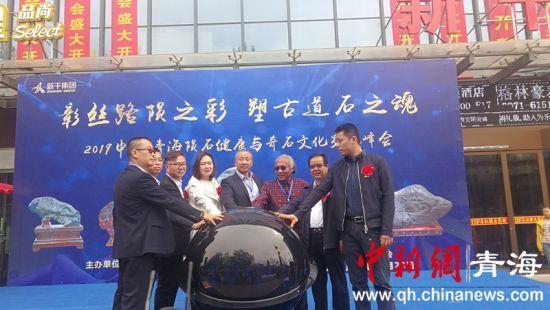青海陨石健康与奇石文化交流峰会举行