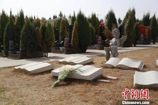 探访青海各大公墓:改变传统观念推广节地生态殡葬